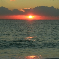 Dania Beach Pink Sunrise